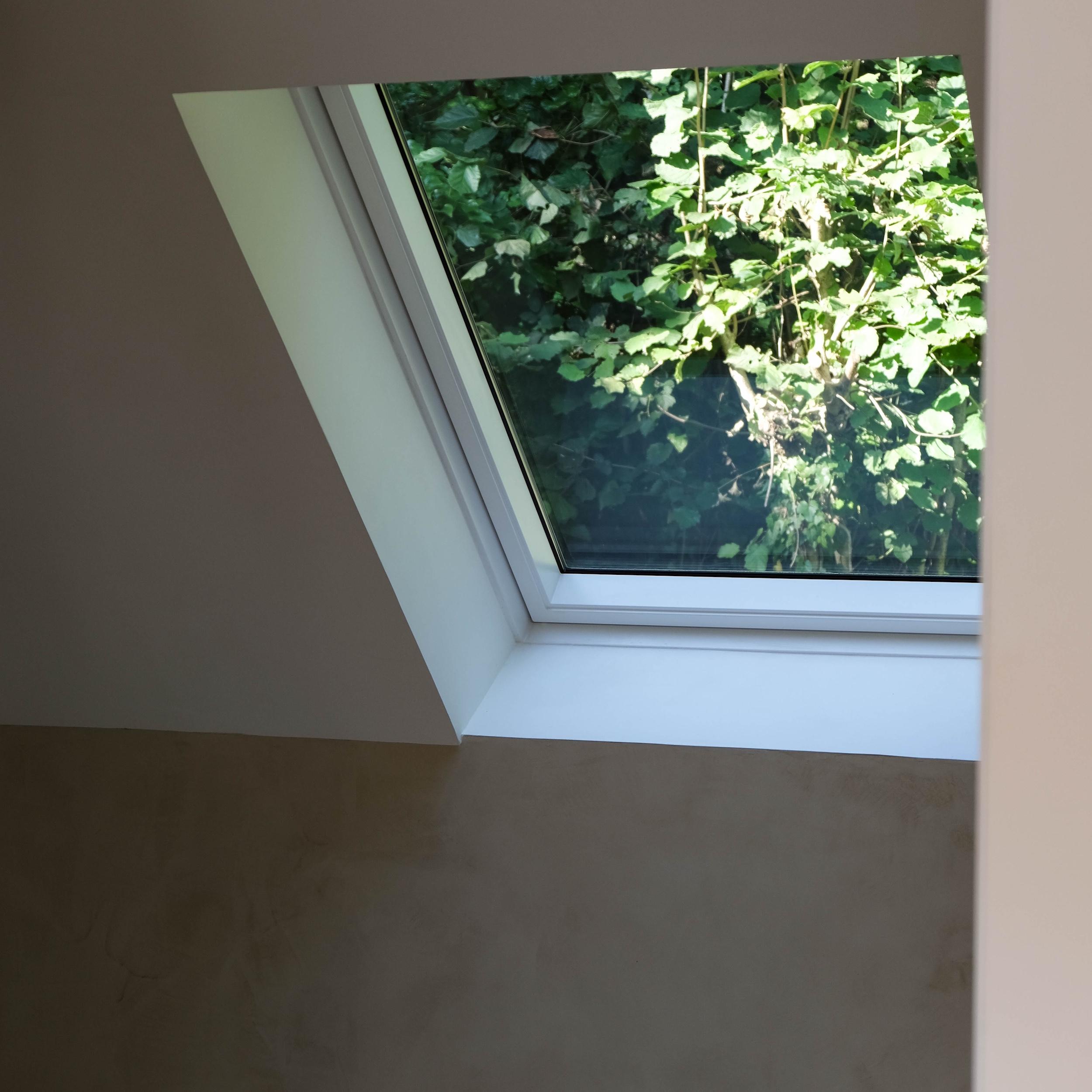 velux fenetre de toit vue vegetale