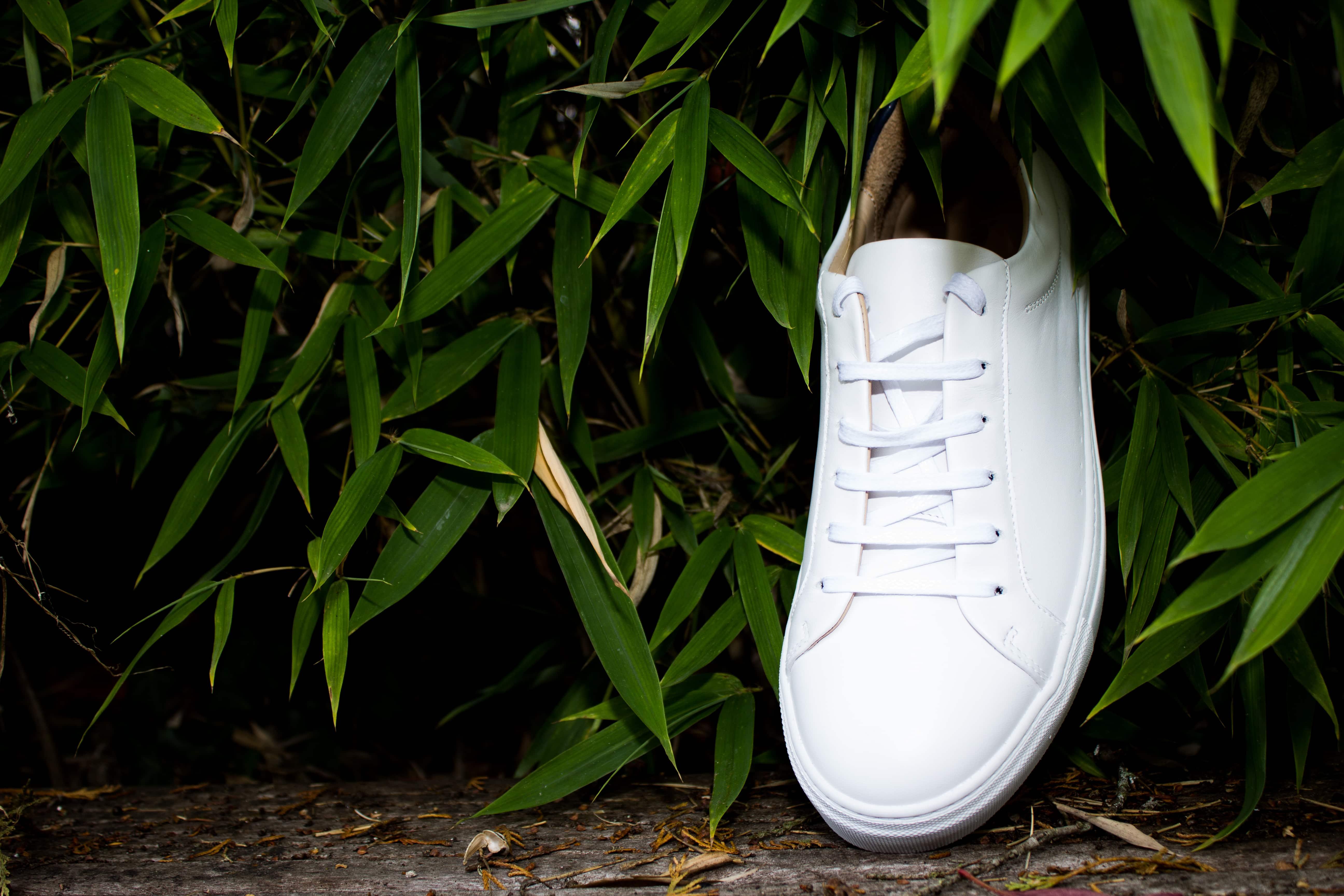 sneakers pied de biche forêt