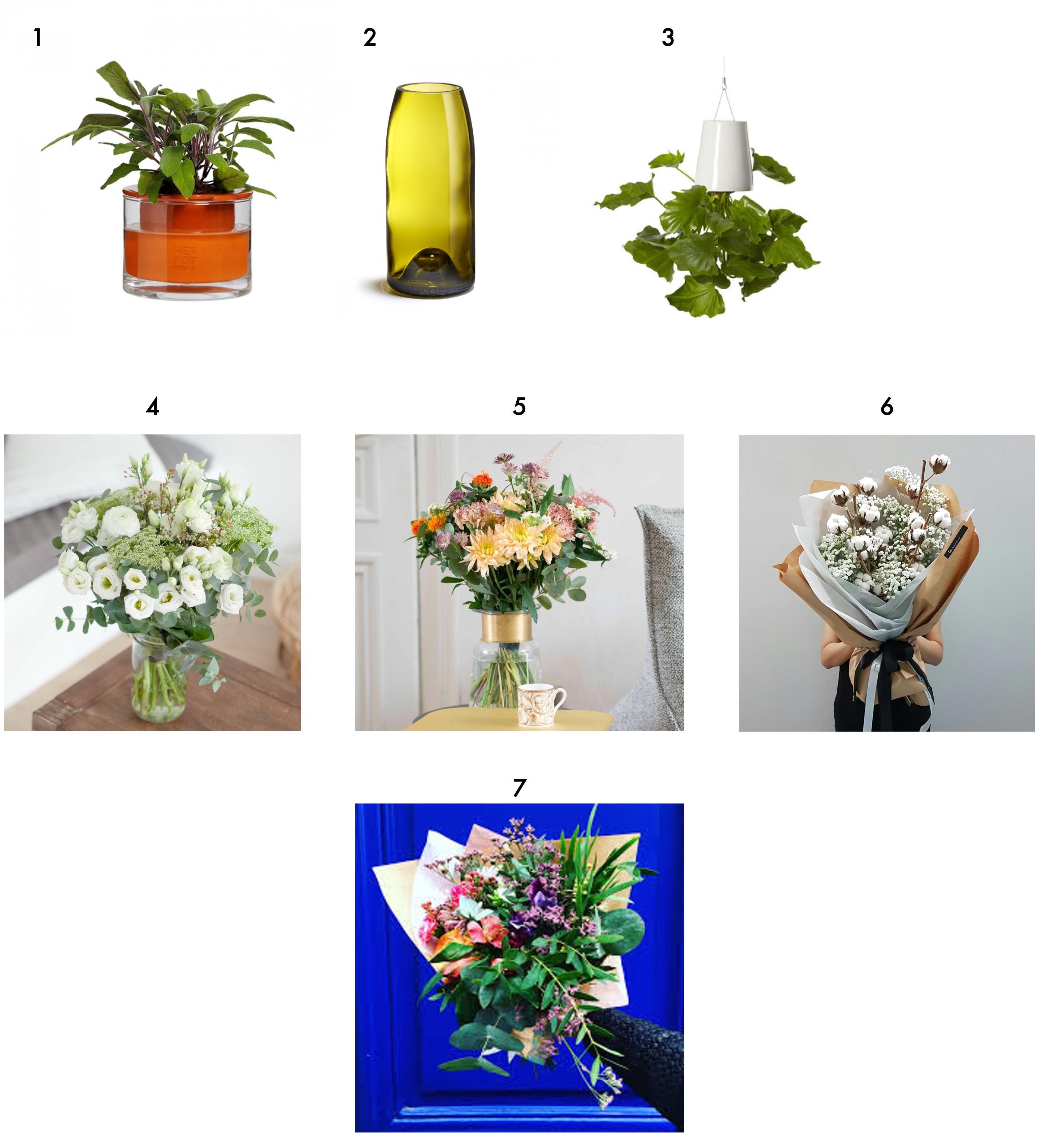 selection plantes noel cadeau