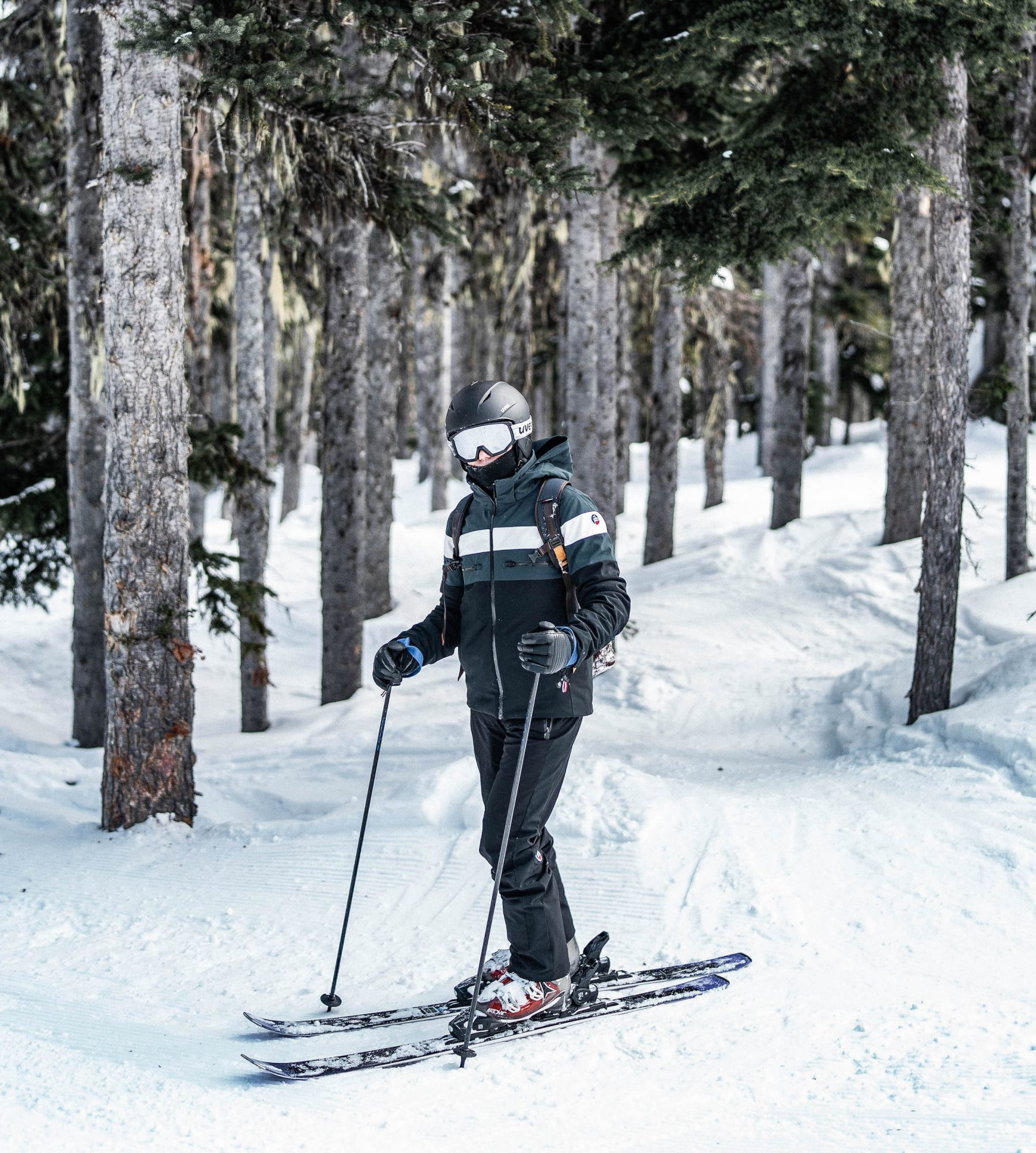 skier a whistler