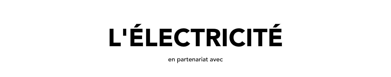 Appareillage électrique